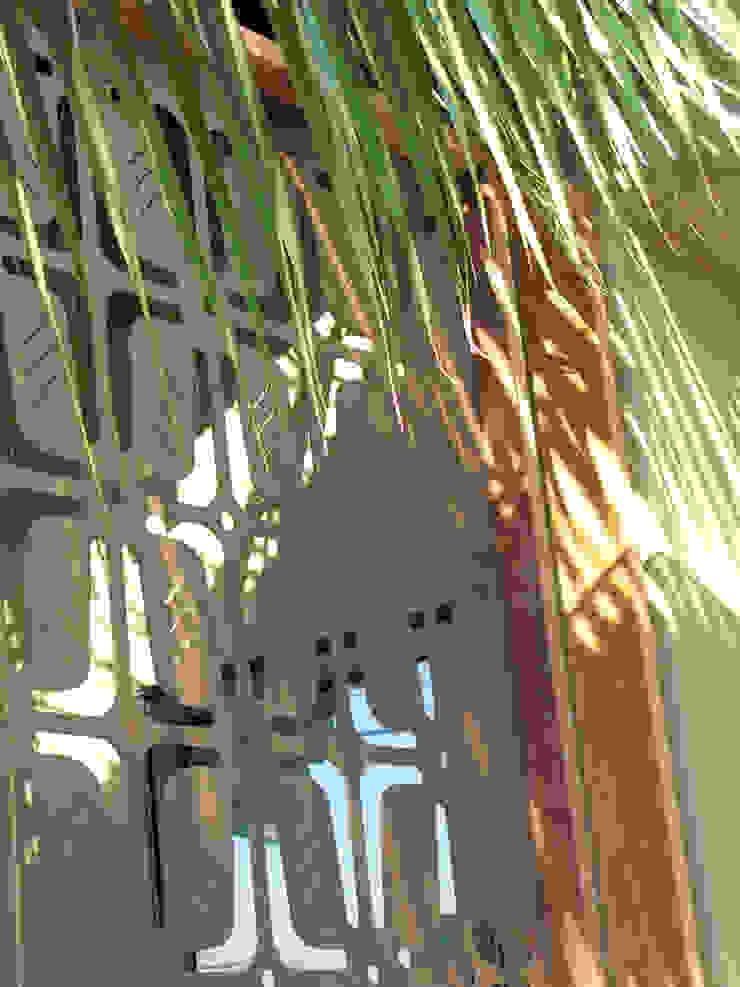 Island Style Tropical Tropical style garden by Debora Carl Landscape Design Tropical