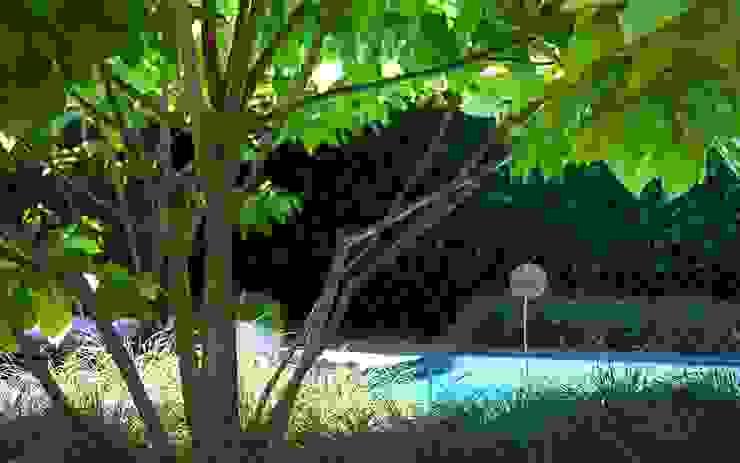 Modern style gardens by Stoop Tuinen Modern