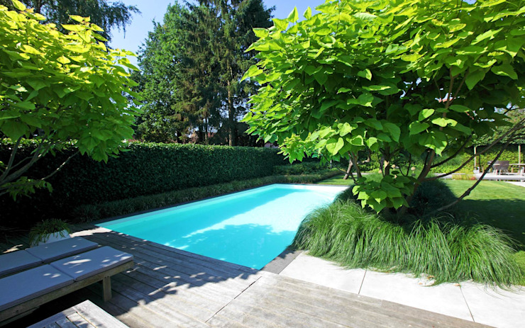 Jardins modernos por Stoop Tuinen Moderno