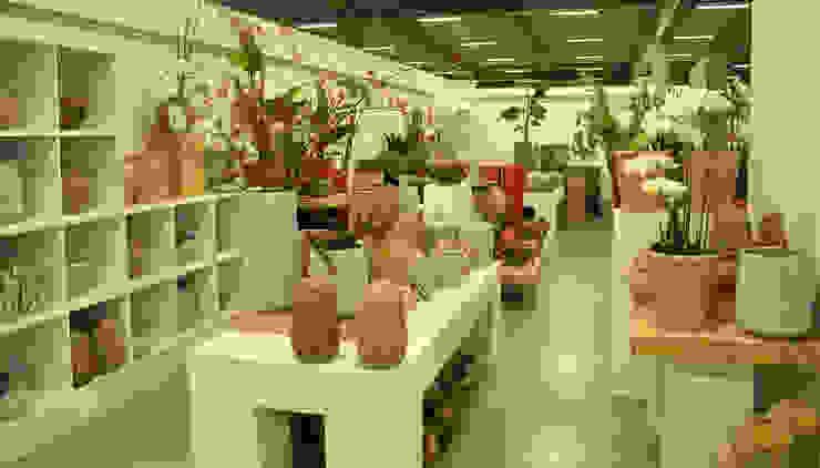 woonaccessoires, decoratie en lifestyleproducten : modern  door Groothandel in decoratie en lifestyle artikelen, Modern