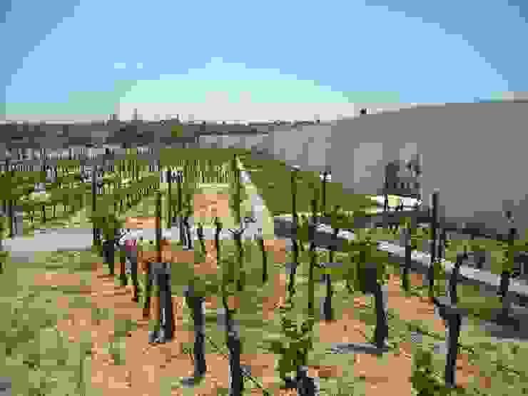 L'And Vineyards por Jardins do Paço