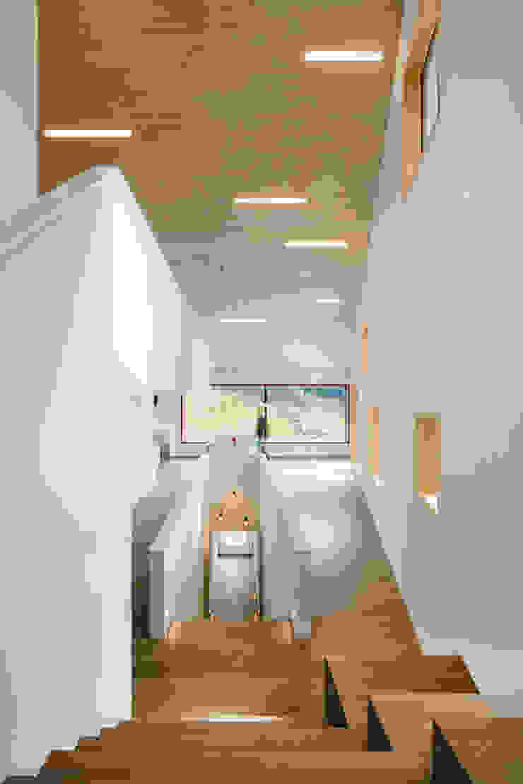 Cloud Cuckoo House Modern corridor, hallway & stairs by ÜberRaum Architects Modern