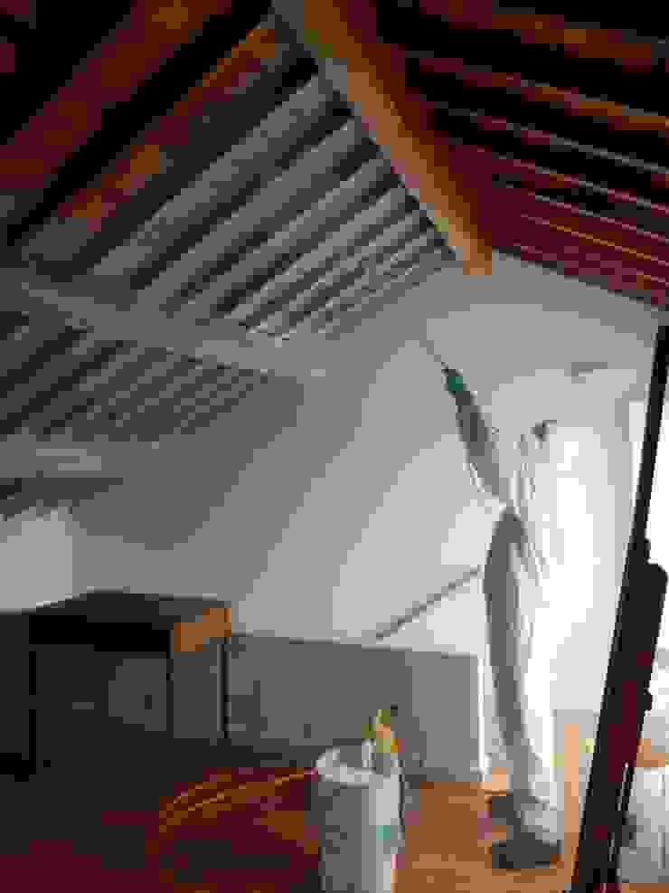 Tratamento de Termitas por Pluggo – Wood for Life®