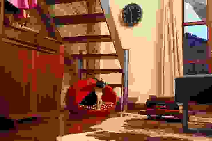 現代  by Viridis Productos Eco Amigables, 現代風 塑膠