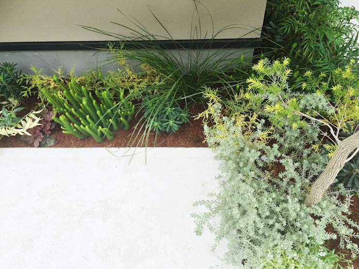 Modern style gardens by (有)ハートランド Modern