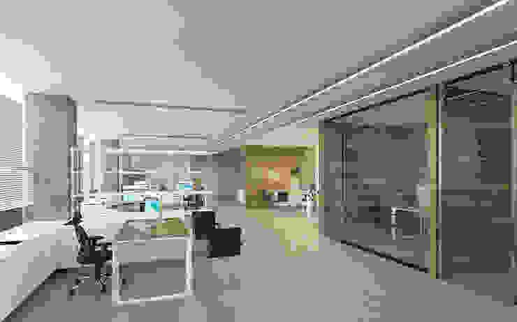 Açık Ofis Modern Çalışma Odası Pronil Modern