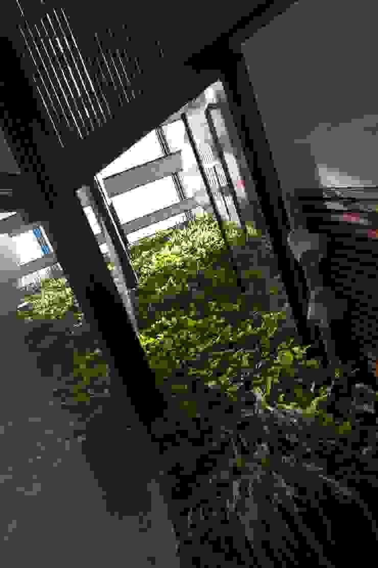 Paterson 3 Modern garden by AR43 Architects Pte Ltd Modern