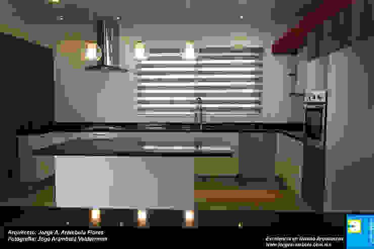 COCINA Cocinas minimalistas de Excelencia en Diseño Minimalista Compuestos de madera y plástico