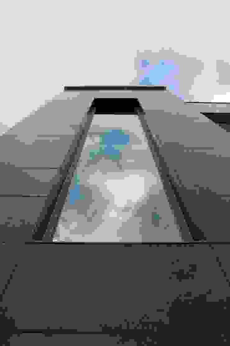 FBF materiais de construção Modern