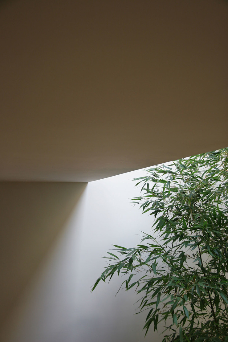 Bamboo Courtyard Modern Corridor, Hallway and Staircase by AtelierSUN Modern