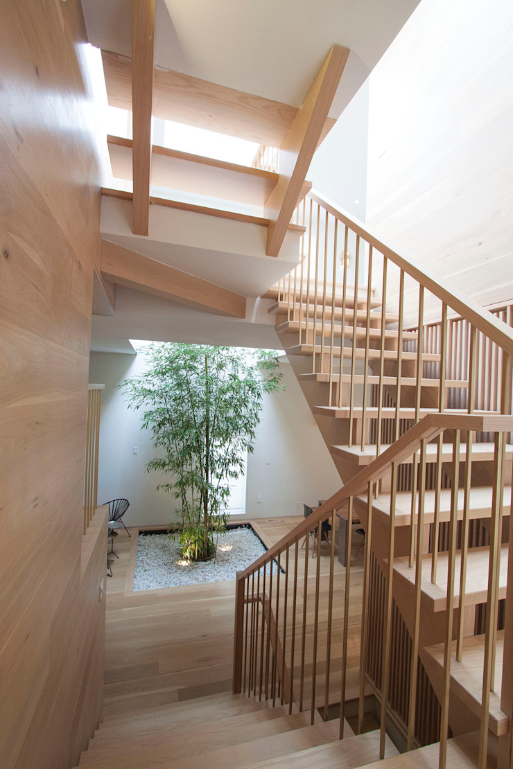 staris Modern Corridor, Hallway and Staircase by AtelierSUN Modern Engineered Wood Transparent