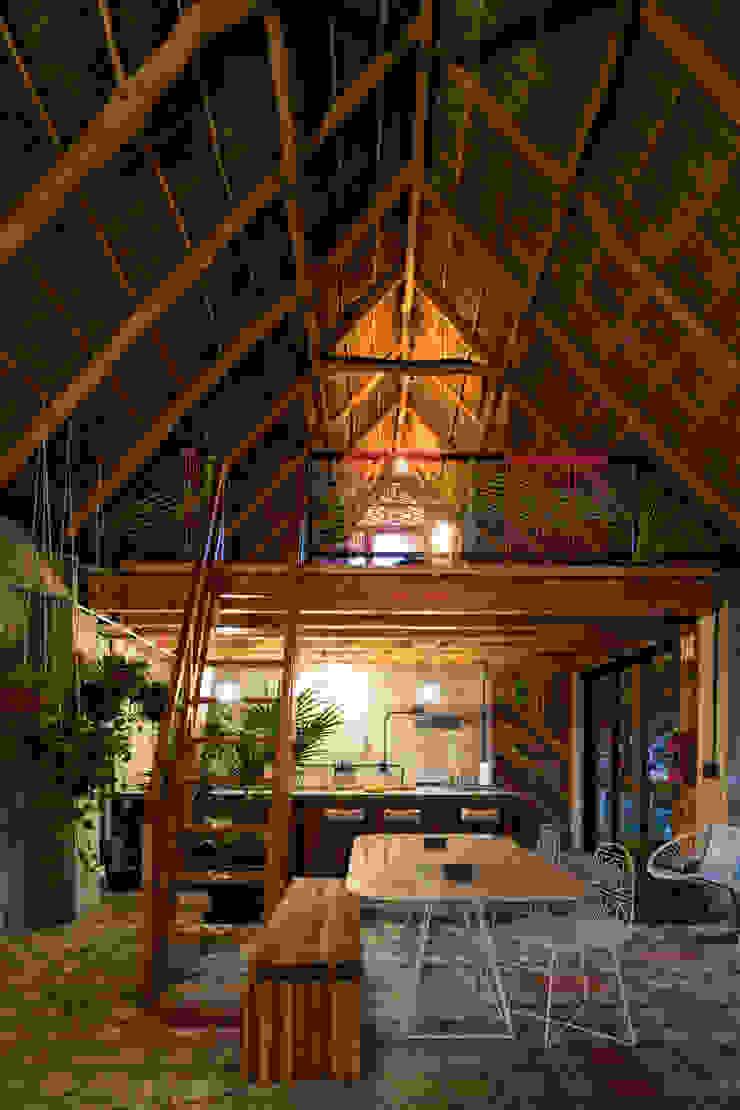 PLAZA PAPELILLO Comedores tropicales de MORADA CUATRO Tropical
