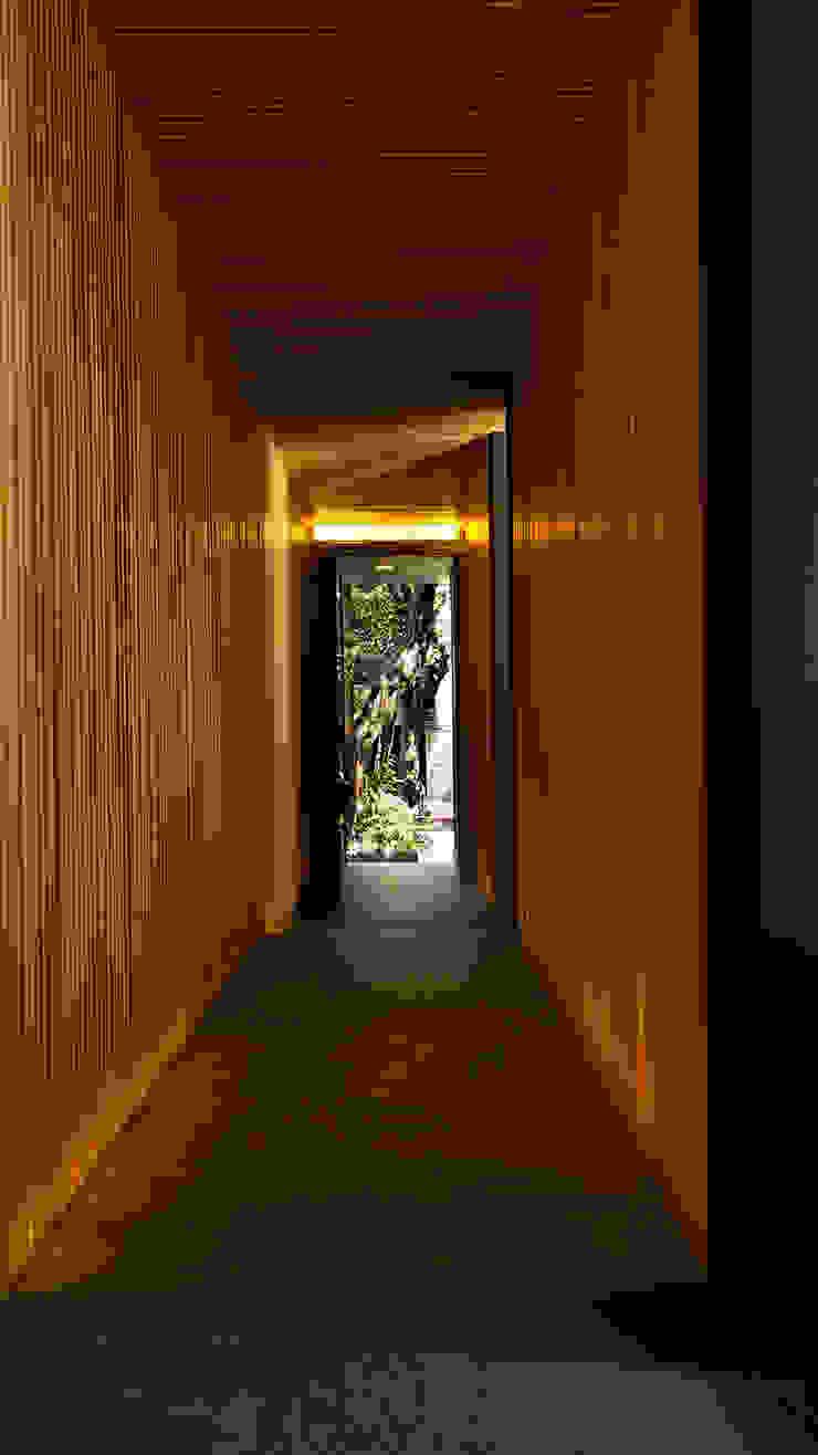 Acceso Peatonal Pasillos, vestíbulos y escaleras modernos de Wolff Arquitectura Moderno Madera Acabado en madera