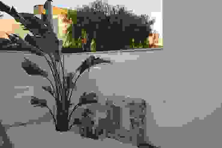 Jardins modernos por Arch. STEFANELLI Gabriella Moderno