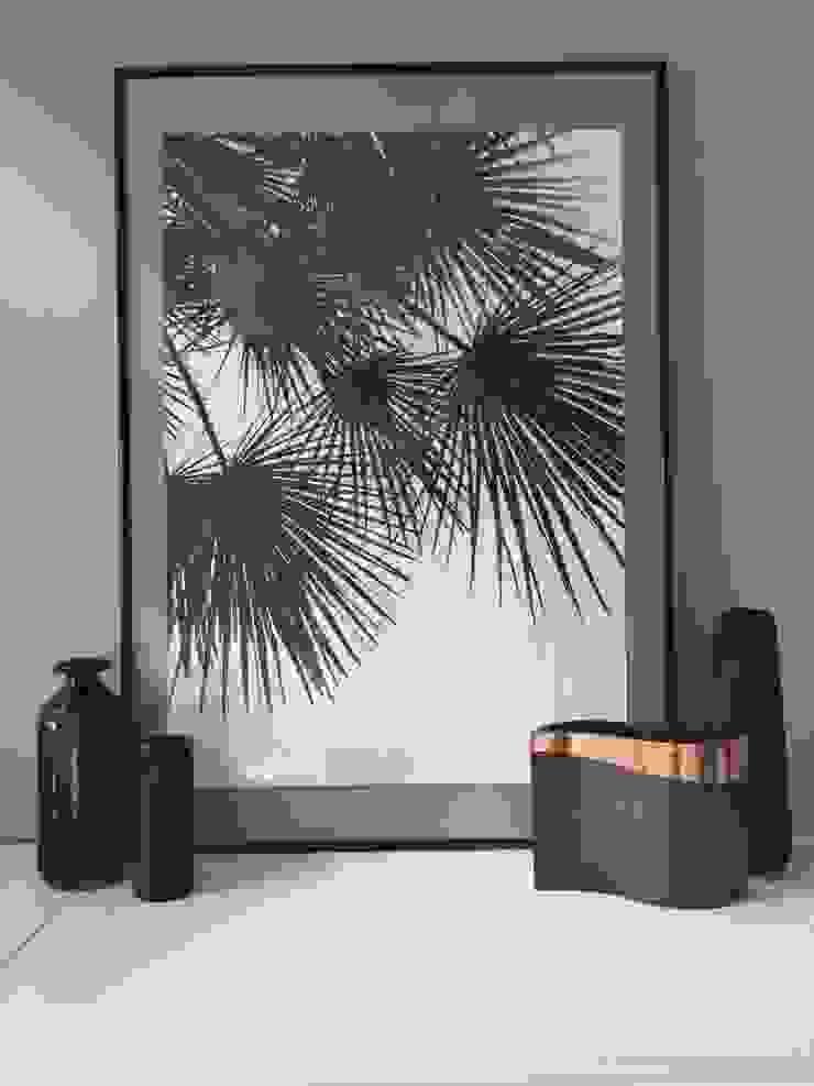 par Amaris Elements Moderne