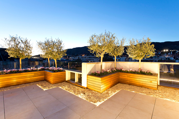 Modern terrace by Garden Center Conillas S.L Modern Wood Wood effect