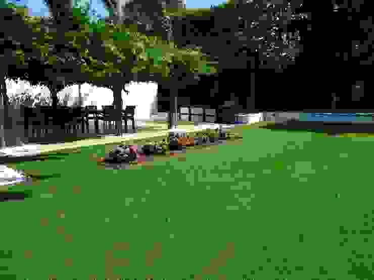 Jardim – Guimarães Jardins modernos por TERRA JARDIM Moderno