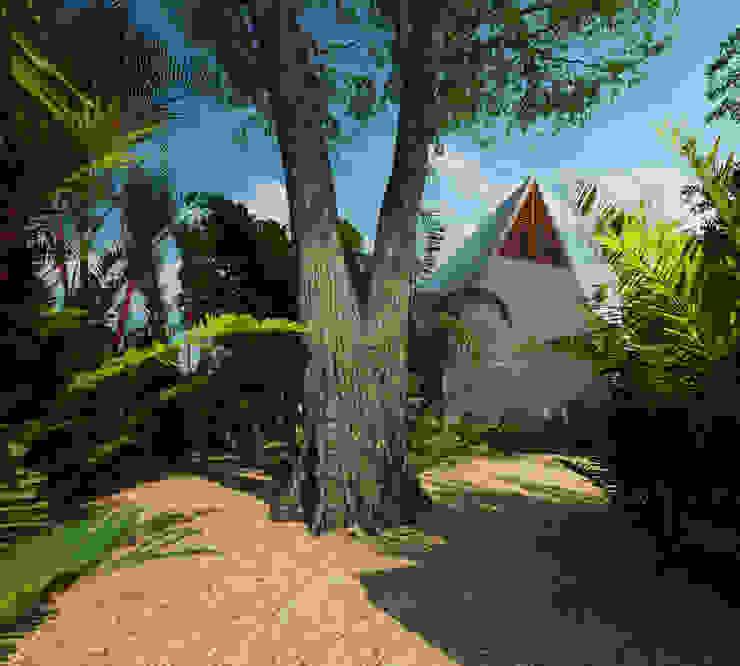 Jardines de estilo tropical de La Desarrolladora Tropical Piedra