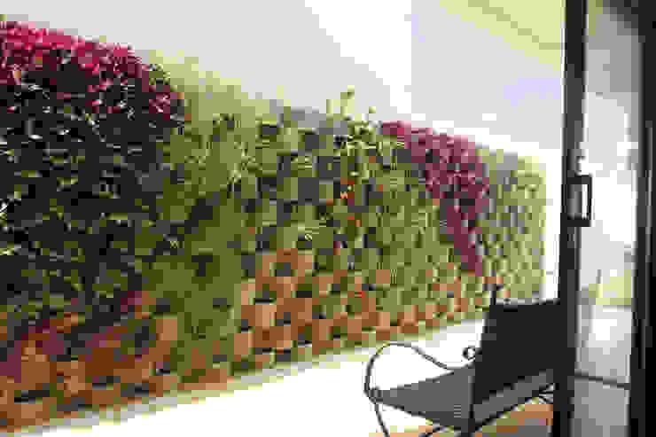 Jardines de estilo moderno de Taguá Arquitetura Moderno