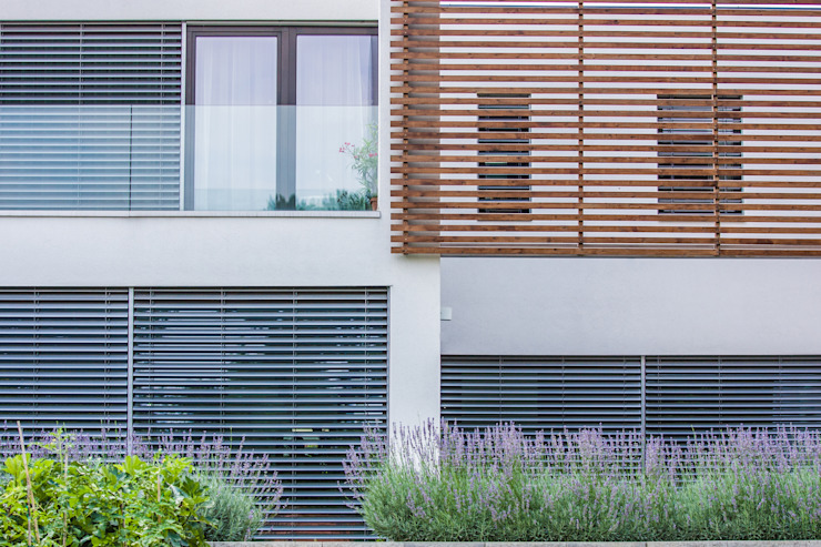 Windows by Bata Tamas Photography, Modern