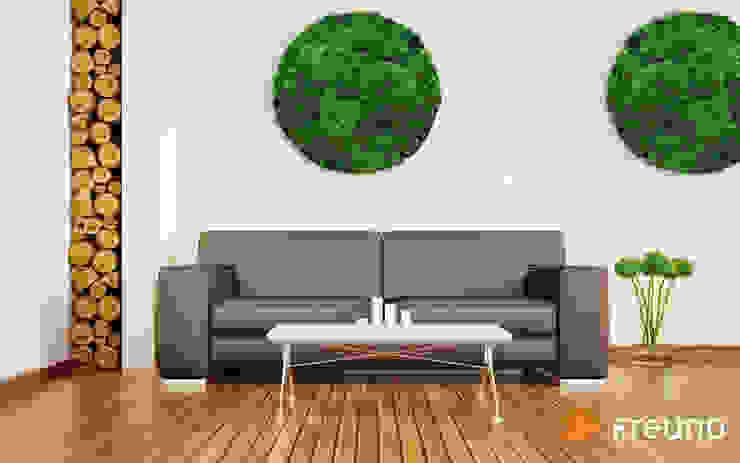 Freund GmbH SalasAccesorios y decoración Verde