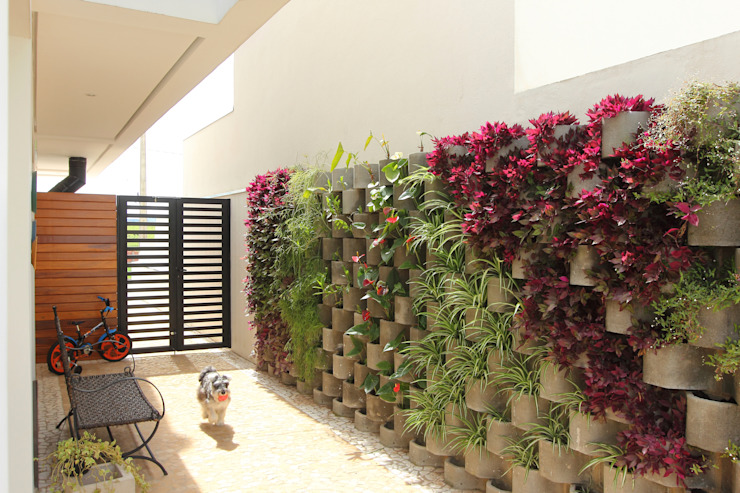 Taguá Arquitetura สวน