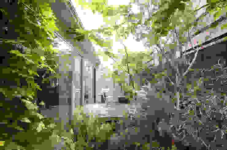 ディンプル建築設計事務所 Vườn phong cách hiện đại
