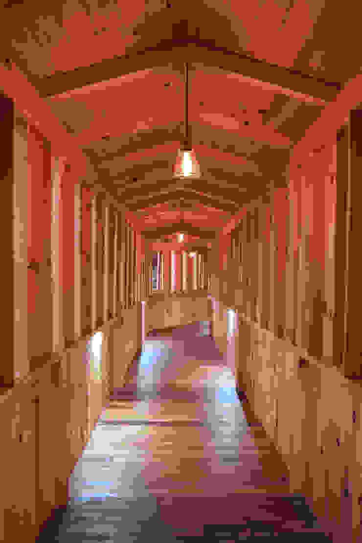 CABAÑA EN TAPALPA Pasillos, vestíbulos y escaleras rústicos de MORADA CUATRO Rústico