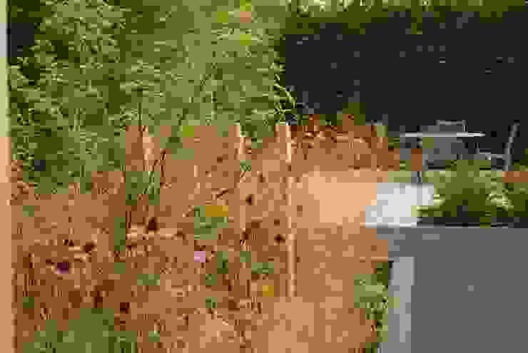 Garden Design Poynton Modern style gardens by Hannah Collins Garden Design Modern