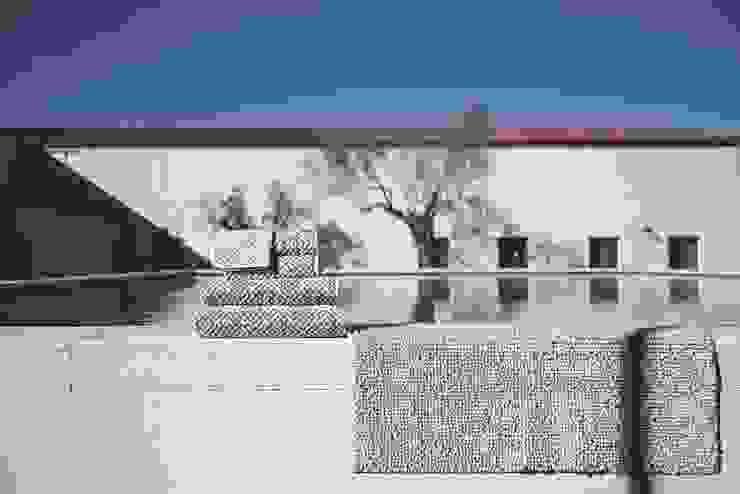 Grafico Bath Coordinate por Sorema Clássico