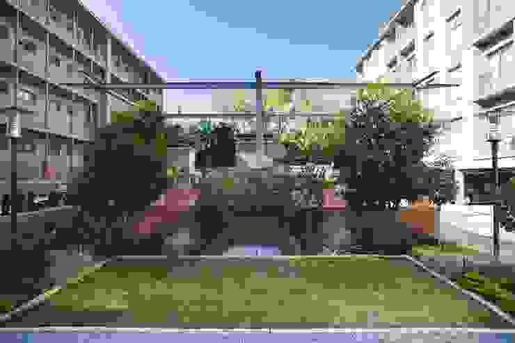 129@Brooklyn Modern houses by Swart & Associates Architects Modern