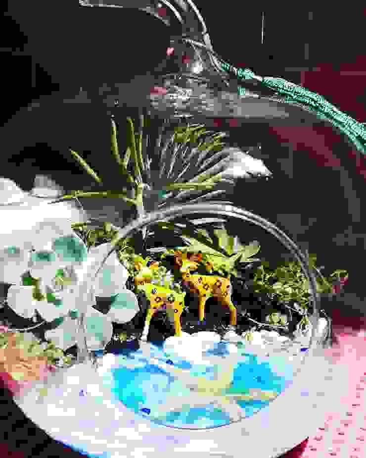 Teraryum Terapi – Mini Bahçe : modern tarz , Modern Cam