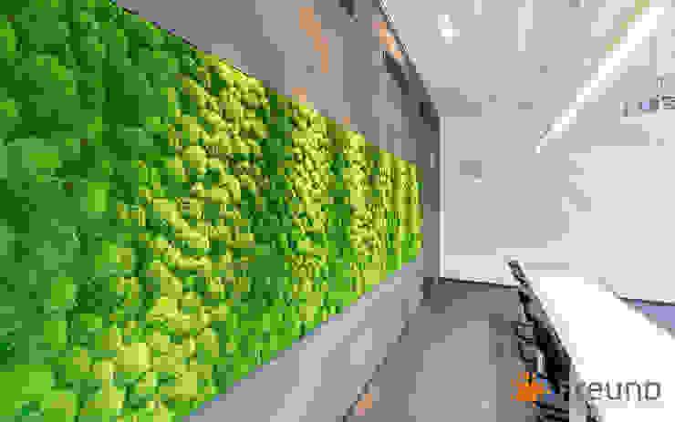 Freund GmbH Paisajismo de interiores Verde