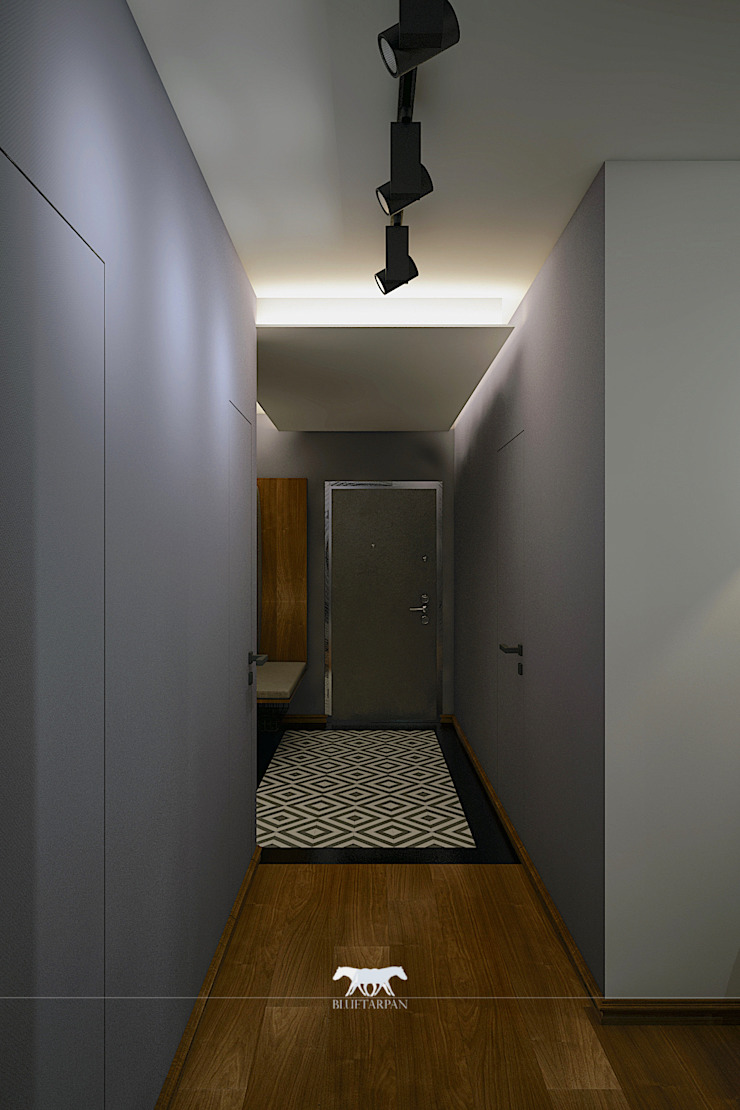 Hall Eclectic style corridor, hallway & stairs by BLUETARPAN Eclectic Wood Wood effect