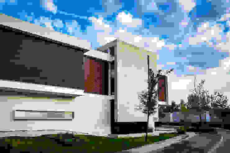 SICOMOROS UNO CERO SIETE Casas modernas de GENETICA ARQ STUDIO Moderno Concreto