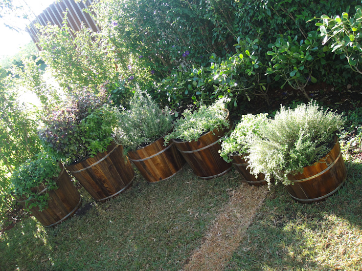condomínio Fazenda Boa Vista Jardins tropicais por EKOA Paisagismo Tropical