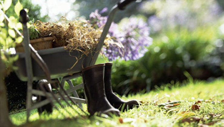 Garden Maintenance Liverpool di Gardeners Liverpool