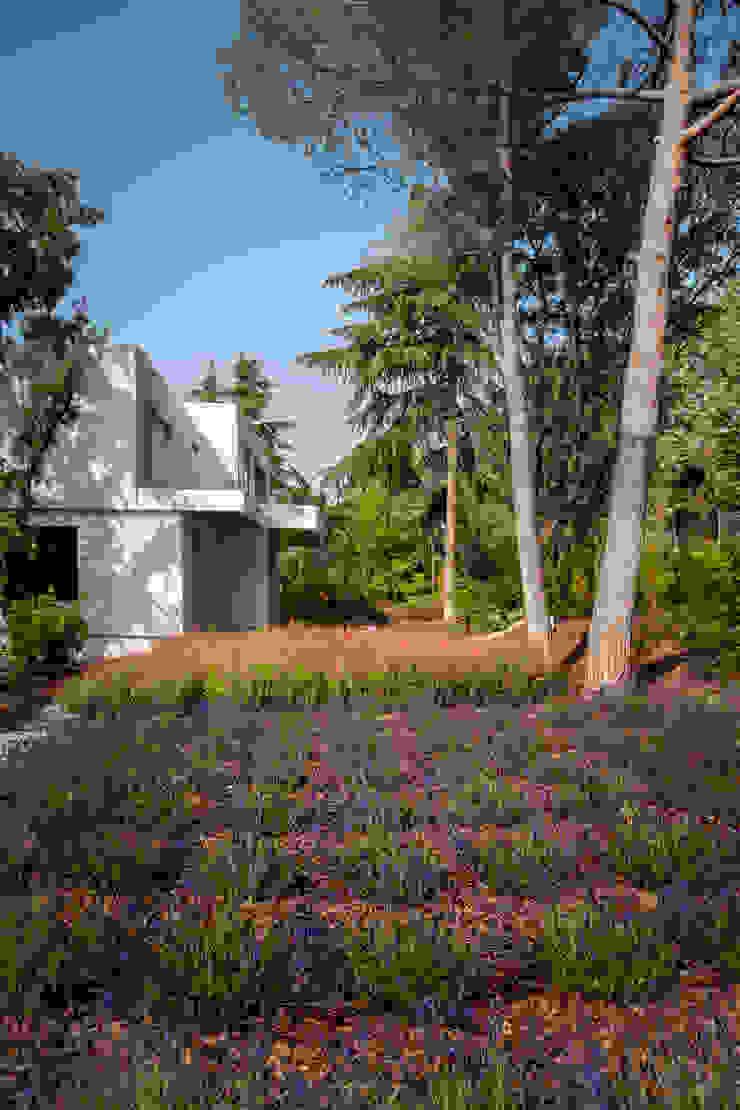 Дома в стиле модерн от ÁBATON Arquitectura Модерн
