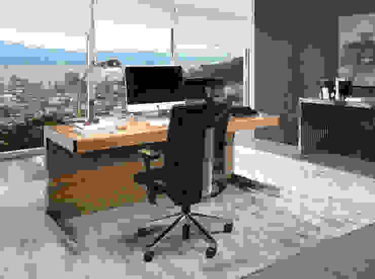 Laskasas Modern study/office