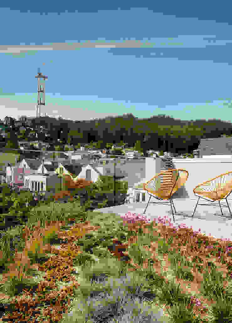 Fitty Wun Modern Terrace by Feldman Architecture Modern