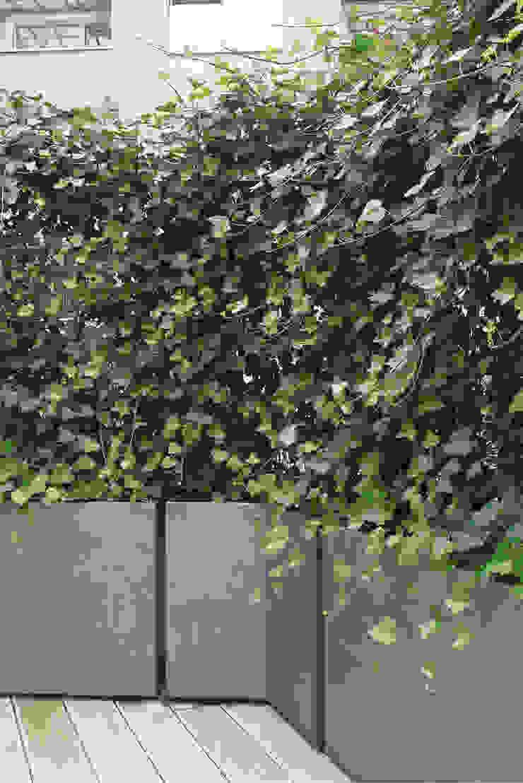 ATELIER SO GREEN Balconies, verandas & terraces Plants & flowers