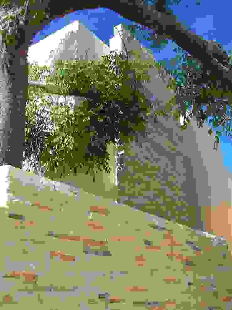 proyecto y obra casa habitacion Casas eclécticas de FRACTAL CORP Arquitectura Ecléctico Piedra