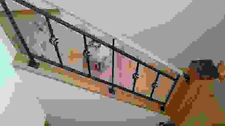 愛犬愛猫家住宅~ジョエルとその仲間たち~ 北欧スタイルの 玄関&廊下&階段 の stage Y's 一級建築士事務所 北欧 木 木目調