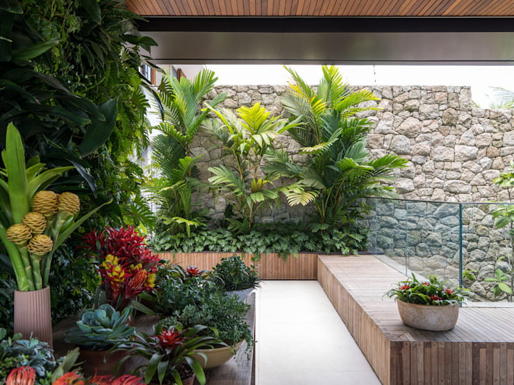 Tropical style garden by Daniel Nunes Paisagismo Tropical