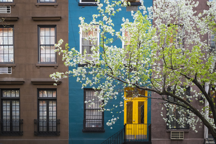 Blossoming tree near an old apartment building, Manhattan, New York City by homify