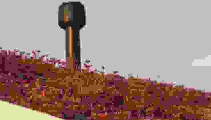 Черный дом с зеленой крышей: Сады в . Автор – СпецПаркДизайн_,