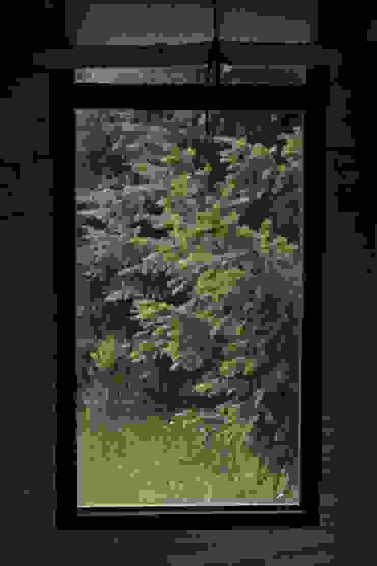 Paico Scandinavian style windows & doors Iron/Steel