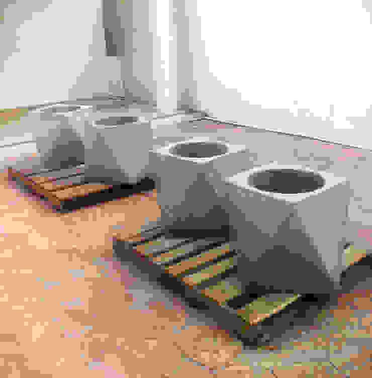 Macetas Octagonales de Catorce/21 Moderno Concreto