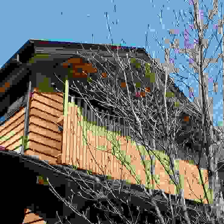 赤羽M邸-外観-見上げ オリジナルな 家 の アイプランニング オリジナル 木 木目調