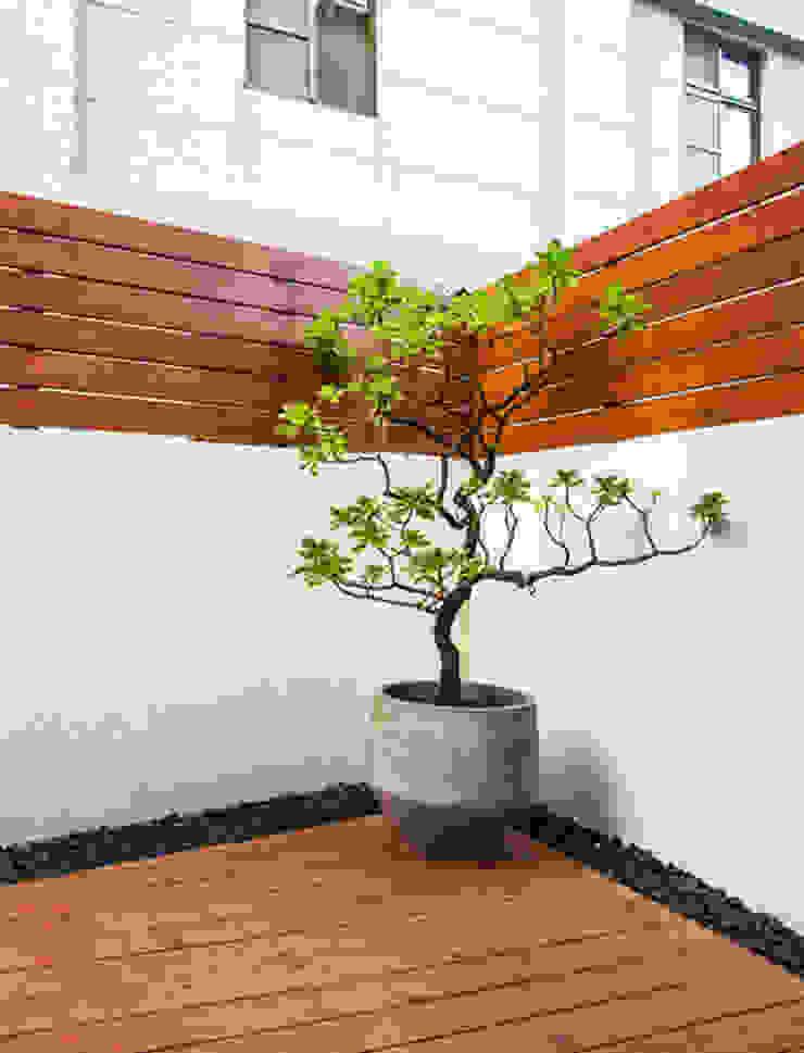 直譯空間設計有限公司 Balcones y terrazas de estilo moderno Acabado en madera